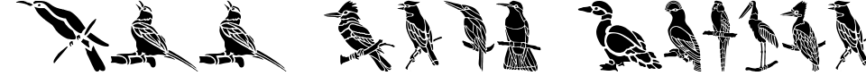 Anteprima - Font HFF Bird Stencil