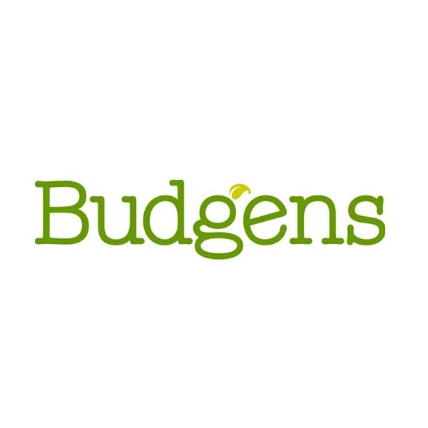Budgens Font
