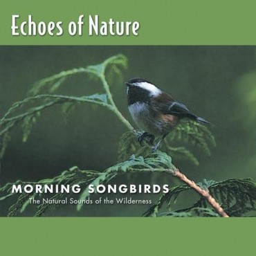 Echoes of Nature Font
