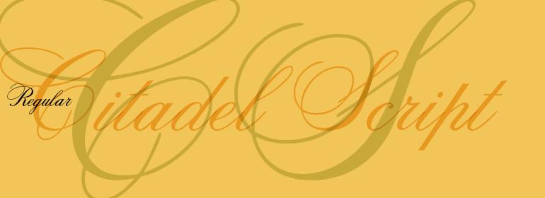 citadel-script1