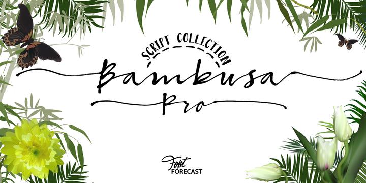 Bambusa Pro – Sturdy Calligraphic Font Poster A