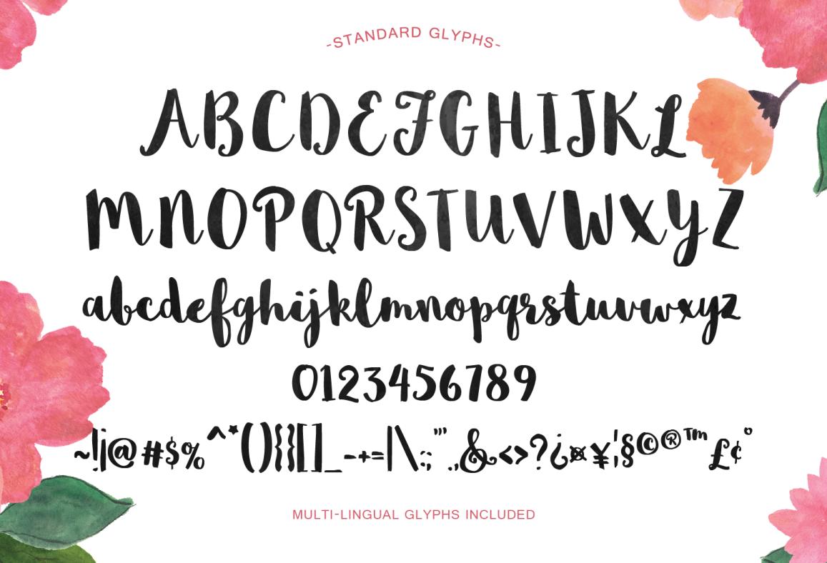 Sophia – Free Hand Lettered Script Font Poster B