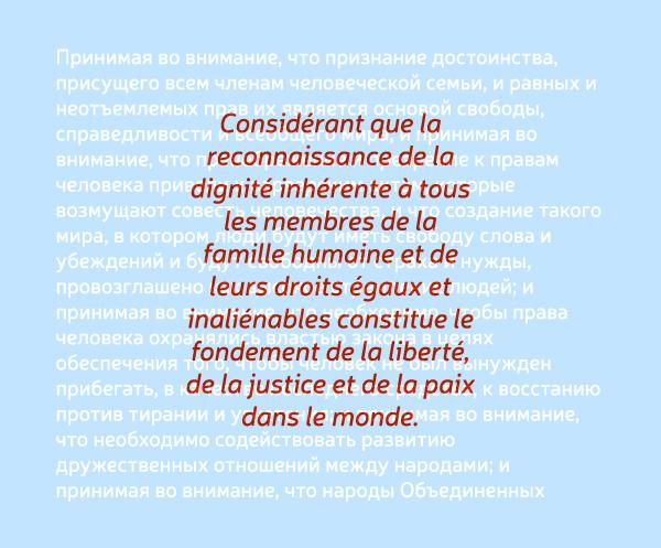 Neris – Free Grotesque Sans Font Poster D