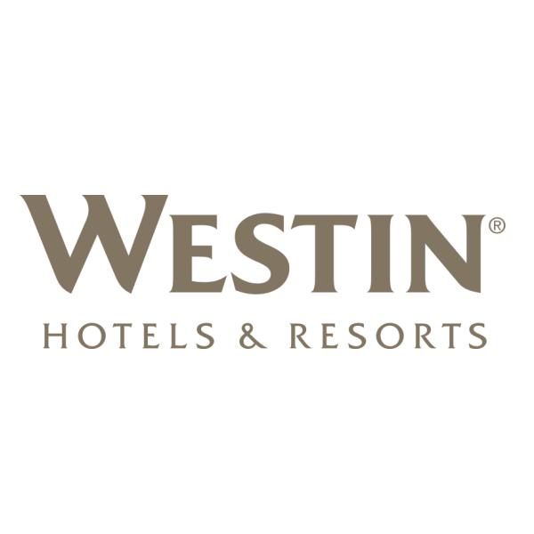 Westin Logo Font