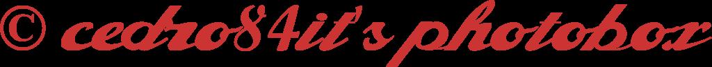 alfaowner-script-font